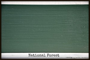 nationalforest