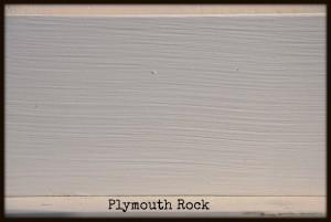 plymouthrock