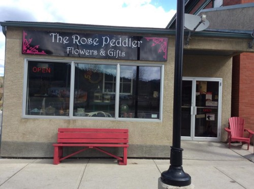 The Rose Peddler Rose Gardenjpg